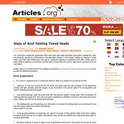 Steps of Roof Painting Tweed Heads