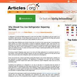 Why Should You Use Refrigerator Repairing Services