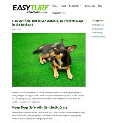 Why Artificial Turf in San Antonio, TX is Safer Than Real Grass for Dogs