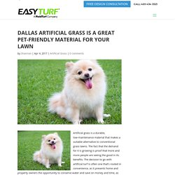 Dallas Artificial Grass is a Great Pet-Friendly Material for Your Lawn