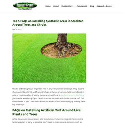 - Artificial Grass in Stockton, CA
