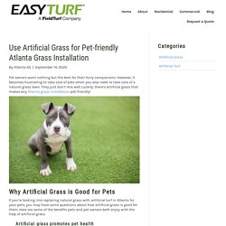 Why You Should Use Artificial Grass for a Pet-friendly Atlanta Grass Installation