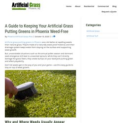 How to Stop Weed Growth on Artificial Grass Putting Greens in Phoenix