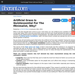 Artificial Grass Is Quintessential For The Minimalist, Why?
