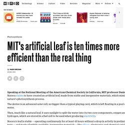 MIT's artificial leaf is ten times more efficient than the real thing