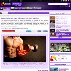 Des muscles artificiels grâce à un polymère élastique