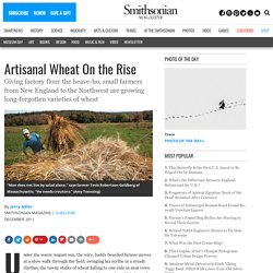 Artisanal Wheat On the Rise | People & Places