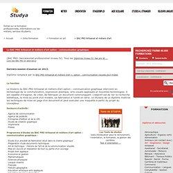 BAC PRO Artisanat et métiers d'art option : communication graphique
