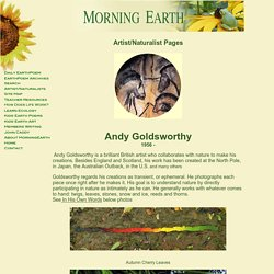 Artist/Naturalist Andy Goldsworthy