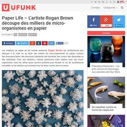 Paper Life – L'artiste Rogan Brown découpe des milliers de micro-organismes en papier