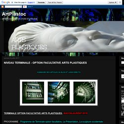 ArtPlastoc: NIVEAU TERMINALE - OPTION FACULTATIVE ARTS PLASTIQUES