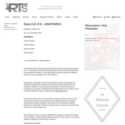 Arts UP » Expo.Coll. # 6 – ANATOMICA