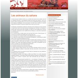 asbl DéClik : Les animaux du sahara
