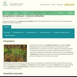 Ascophyllum Nodosum : dossier pratique, clair et complet - Doctonat