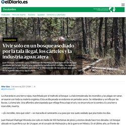 Vivir solo en un bosque asediado por la tala ilegal, los cárteles y la industria aguacatera