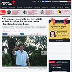 A 75 días del asesinato de Moisés Sánchez, el presunto autor intelectual y 5 agresores siguen libres