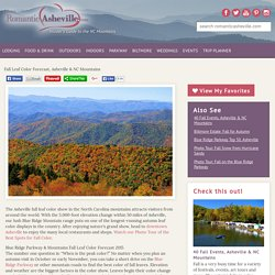Asheville NC Fall Foliage Color Leaf Report 2015