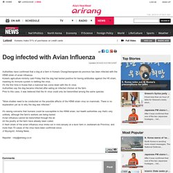 ARIRANG_CO_KR 14/03/14 Dog infected with Avian Influenza