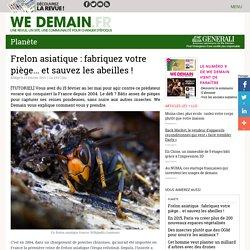 Frelon asiatique : fabriquez votre piège... et sauvez les abeilles !