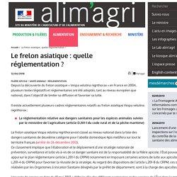 MAA 12/06/18 Le frelon asiatique : quelle réglementation ?