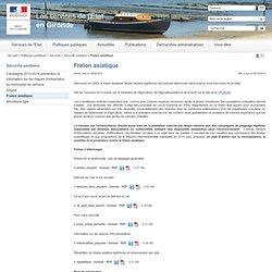 PREFECTURE DE GIRONDE 19/02/13 Dossier : Frelon asiatique