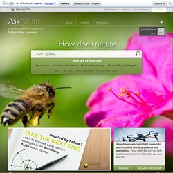 Ask Nature - the Biomimicry Design Portal: biomimetics, architecture, biology, innovation inspired by nature, industrial design - Ask Nature - the Biomimicry Design Portal: biomimetics, architecture, biology, innovation inspired by nature, industrial desi