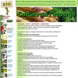 Maraichage coduloup pearltrees - Culture de l asperge ...