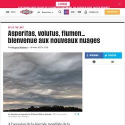 Asperitas, volutus, flumen… bienvenue aux nouveaux nuages