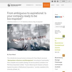 From ambiguous to aspirational: Is your company ready to be bio-inspired? – Biomimicry Institute