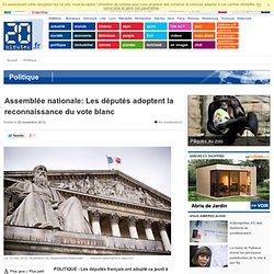 Assemblée nationale: Les députés adoptent la reconnaissance du vote blanc