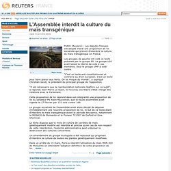 L'Assemblée interdit la culture du maïs transgénique