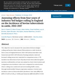 SCIENTIFIC REPORTS 11/10/19 Assessing effects from four years of industry-led badger culling in England on the incidence of bovine tuberculosis in cattle, 2013–2017