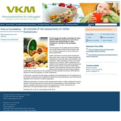 NORWEGIAN SCIENTIFIC COMMITTEE FOR FOOD SAFETY 04/12/14 An overview of risk assessments of «Other Substances»