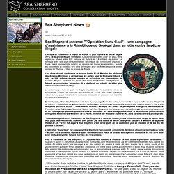 """Sea Shepherd annonce """"l'Operation Sunu Gaal"""" – une campagne d'assistance à la République du Sénégal dans sa lutte contre la pêche illégale - Sea Shepherd FR"""