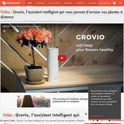 Grovio, l'assistant intelligent qui vous permet d'arroser vos plantes à distance - Tech