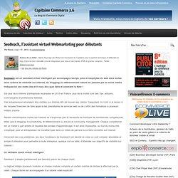 SeoBeach, l'assistant virtuel Webmarketing pour débutants
