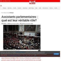 Assistants parlementaires : quel est leur véritable rôle?