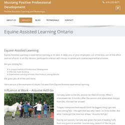Equine Assisted Training: Helpful in career advancement and team building