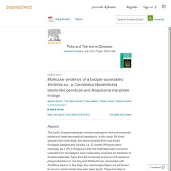 Ticks and Tick-borne Diseases Volume 9, Issue 5, July 2018, Molecular evidence of a badger-associated Ehrlichia sp., a Candidatus Neoehrlichia lotoris-like genotype and Anaplasma marginale in dogs