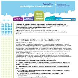 Association Bibliothèques en Seine-Saint-Denis