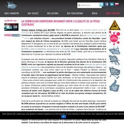 Bloom Association - La Commission européenne reconnaît enfin l'illégalité de la pêche électrique - Bloom Association