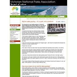 Victorian National Parks Association / Nature Conservation / Parks protection / Alpine cattle grazing – it's a park, not a paddock