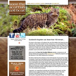 Scottish Wildcat Association