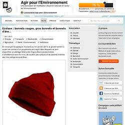 Ecotaxe : bonnets rouges, gros bonnets et bonnets d'âne...