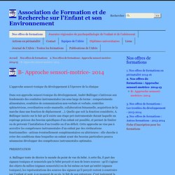 B- Approche sensori-motrice- 2013 - Association de Formation et de Recherche sur l'Enfant et son Environnement