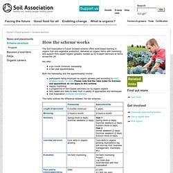 Soil Association : Apprenticeship scheme : Scheme structure