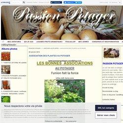 ASSOCIATION DES PLANTES AU POTAGER