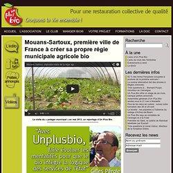 Unplusbio, association spécialisée dans le conseil, la mise en place et le suivi d'une restauration collective de qualité
