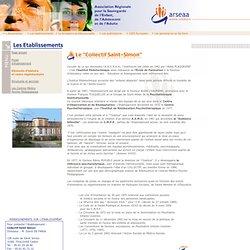 A.R.S.E.A.A. - Association Régionale de Sauvegarde de l'Enfant, de l'Adolescent et de l'Adulte