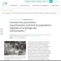 Comment les associations mycorhiziennes orientent les populations végétales et la biologie des communautés ?